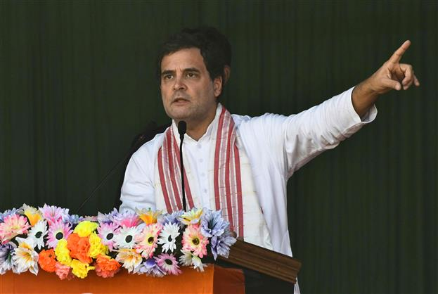 I fear Assam might return to path of violence due to BJP's policies: Rahul Gandhi