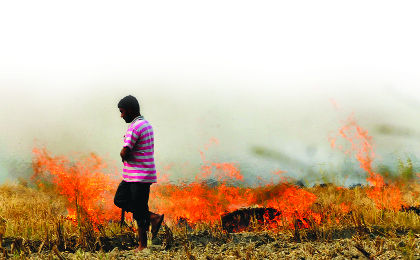 Punjab straw fire fine Rs 6 cr, but just Rs 1 lakh paid up