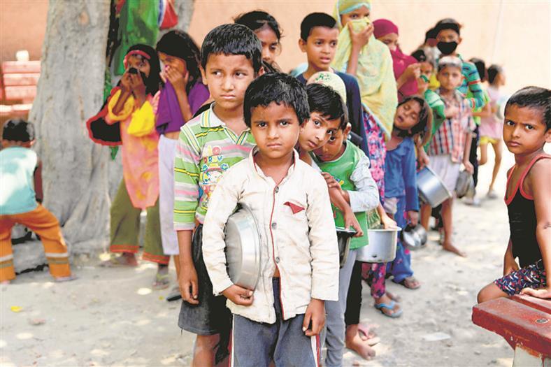 India's 14% population undernourished