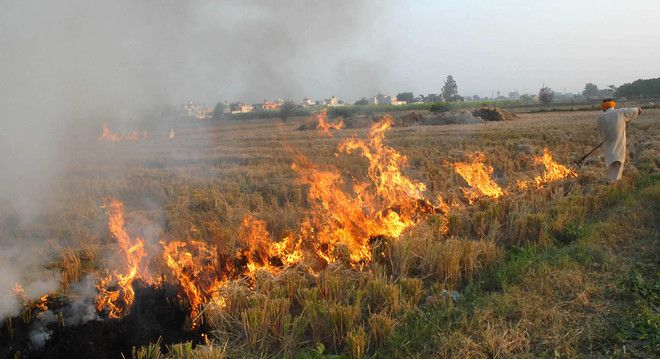 Farm fires: Order on Lokur panel on hold