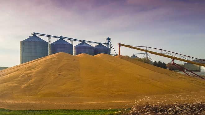 500 farmers lay siege to Adani silo in Moga