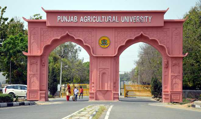 Punjab Agricultural University live programme for farmers held in Ludhiana