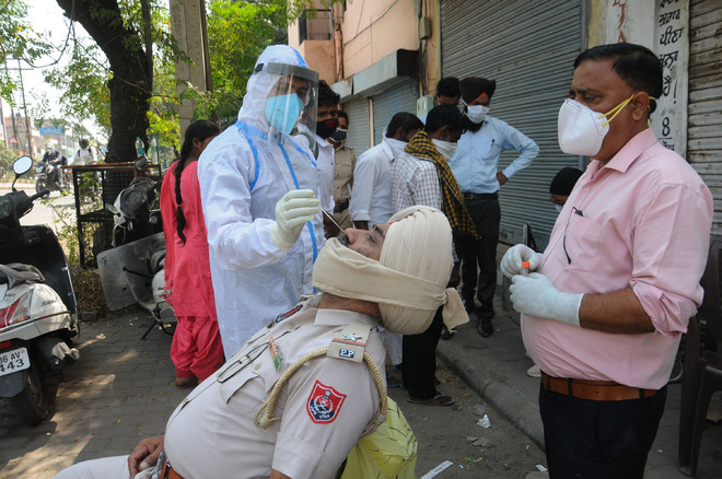 Two die of virus, 85 new cases reported in Jalandhar district