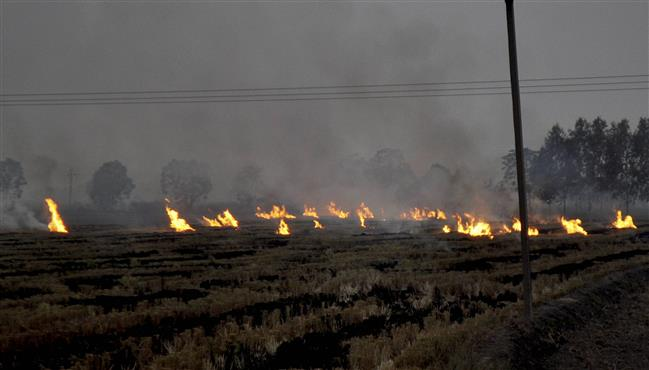 Will prepare policies to control stubble burning, says new air quality panel