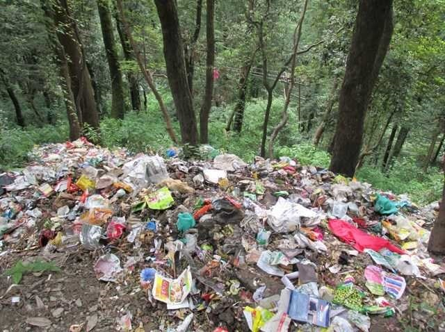 Bir-Billing forest area turns into dumping site, residents fume