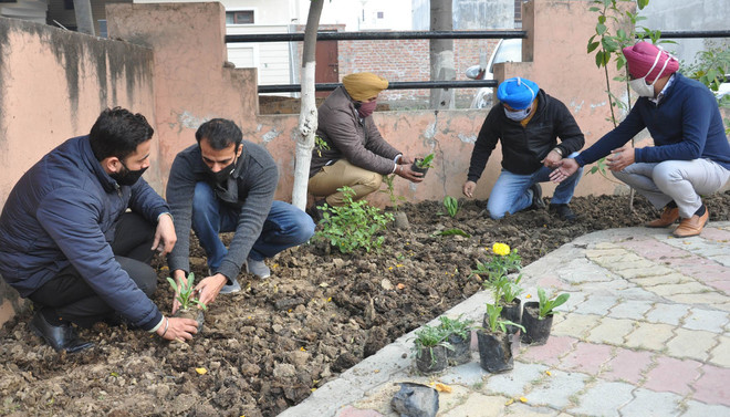 On a mission to beautify city's green lungs