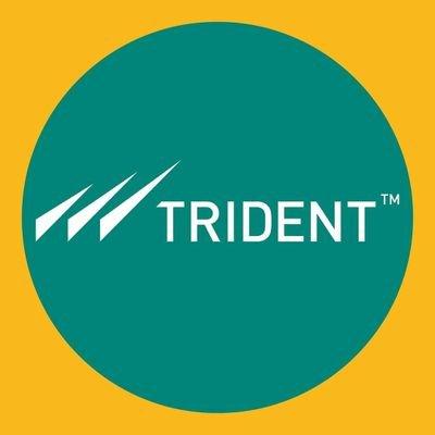 Trident Group to train 1,500 candidates under Grameen Kaushalya Yojana