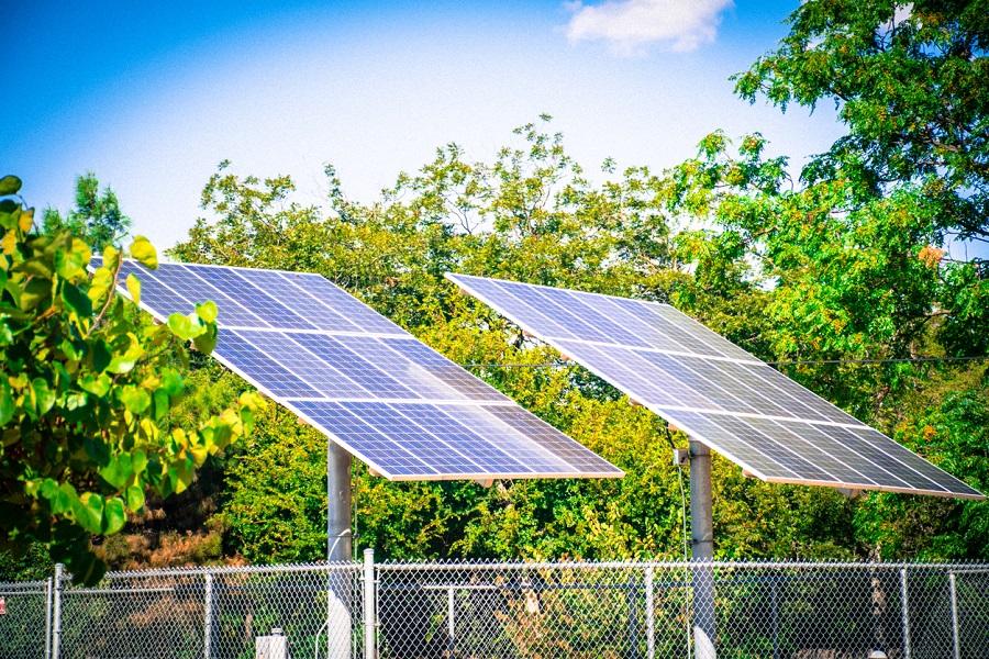 Oakridge Energy to solarise 1,000 KVs, Delhi govt schools