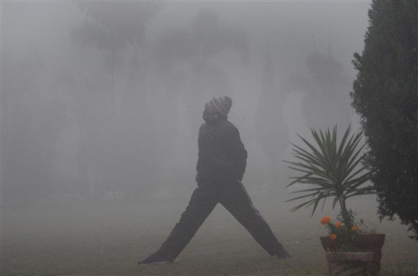 Cold weather conditions persist in Haryana, Punjab; Ludhiana reels at 1.6 degree C