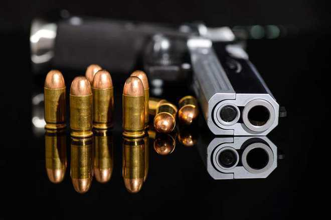 Cops recover pistol, 'belongs to follower'