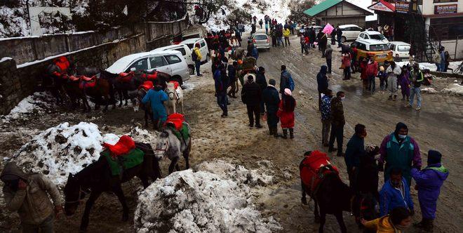 Snowfall at Kufri cheers tourists, tour operators