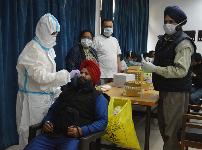 Elderly man dies of Covid, 137 fresh positive cases in Ludhiana