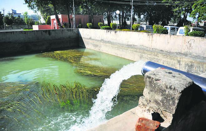 Chandigarh's water storage capacity to double
