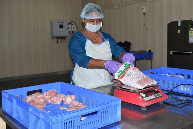 Covid-19 not bird flu, say GADVASU experts