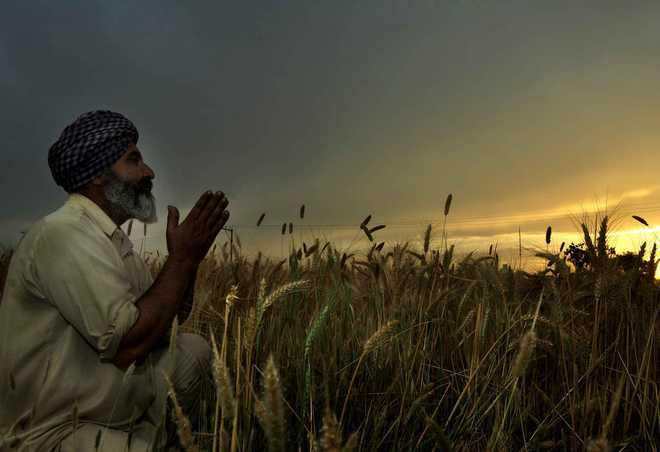 More exemptions for farming, allied activities
