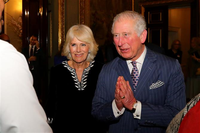 Prince Charles cured by ayurveda, homoeopathy: Minister