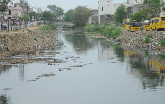 Collect samples of Buddha Nullah water, NGT urged