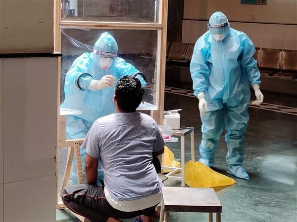 219 new coronavirus cases pushes Punjab tally past 800