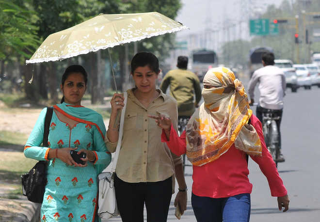 Average temperature over India projected to rise by 4.4 degrees Celsius: Govt report on impact of climate change in country