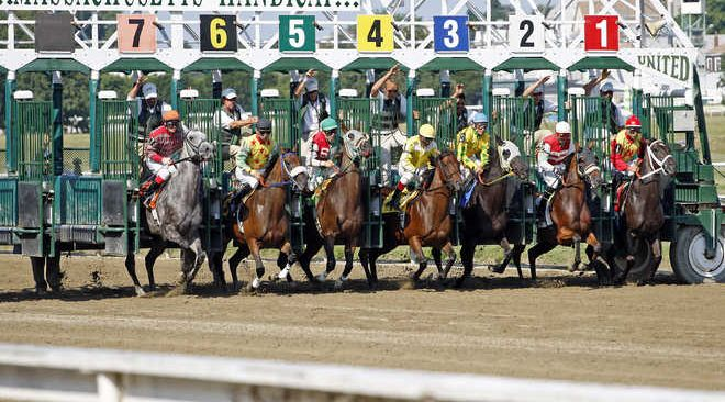 Guindy horse race betting terminology jjj 100 betting