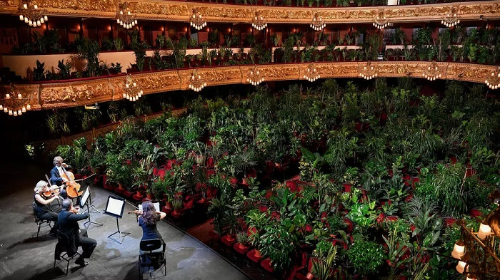 As lockdown lifts, Barcelona plants enjoy a day at the opera