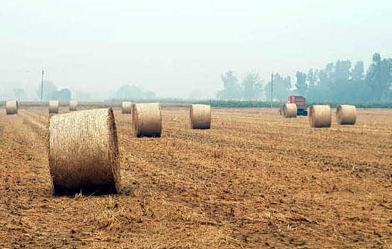 Managing paddy straw