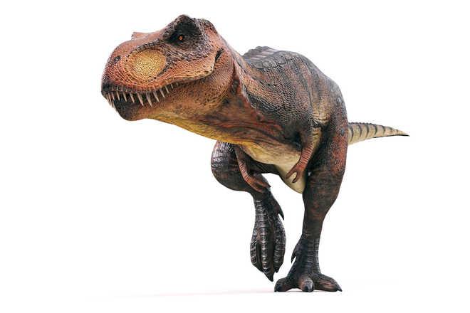 Fossils reveal dinosaur forerunner smaller than a cellphone