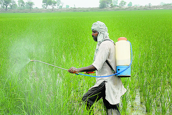 Pesticide firms seek sops to cut China import