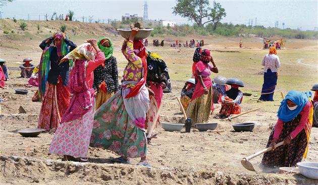 MGNREGA softens the blow