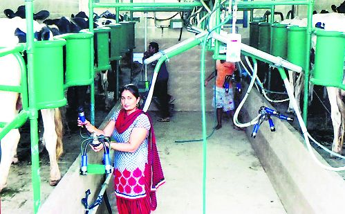 Farming can't be sacrificed at altar of trade
