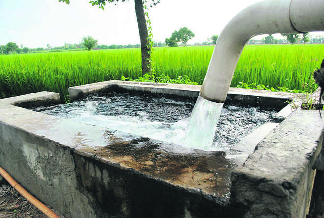 Punjab tops country in over-exploitation of groundwater