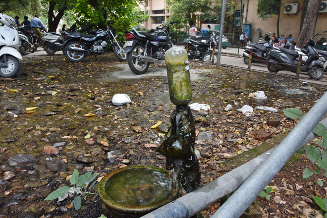 Questions over dengue plans of civic body