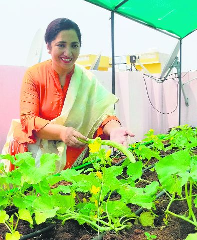She quit her job for full time rooftop kitchen gardening