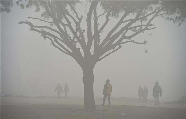 Minimum temperature dips to 2 degrees Celsius in Delhi