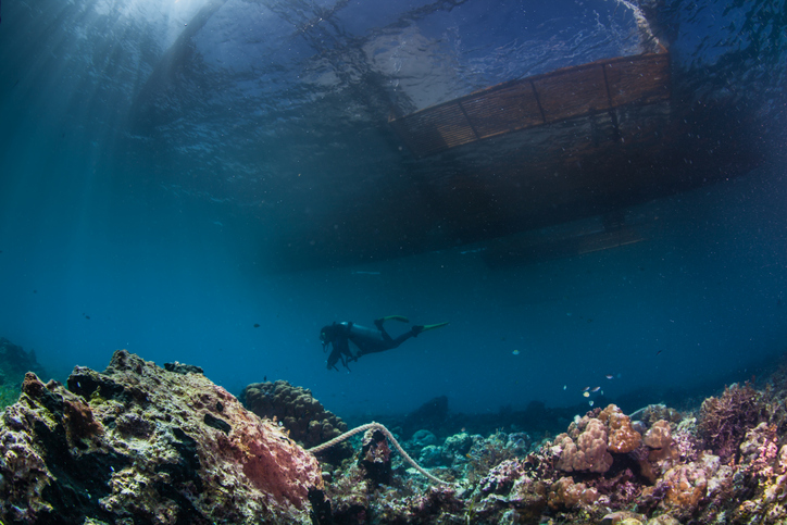 Despite reduced carbon emissions, world's oceans continue to warm