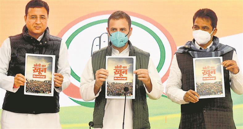 Five top shots had Balakot info, must probe who leaked it: Rahul Gandhi