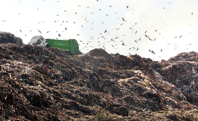 No steps being taken for decontamination of ground water at Bandhwari dumping site: CPCB