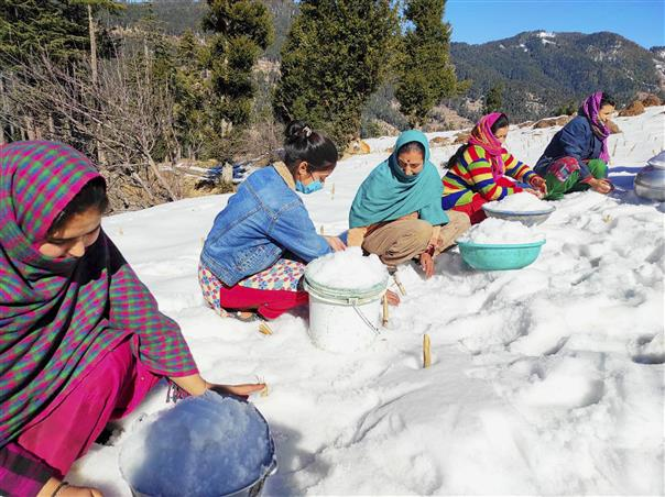 Harsh winter freezes taps, plunges village in Bhaderwah valley into water crisis