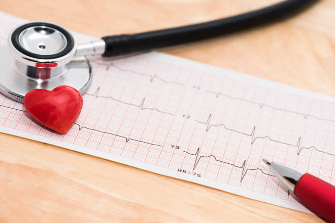 Brown fat may protect against cardiac, metabolic conditions