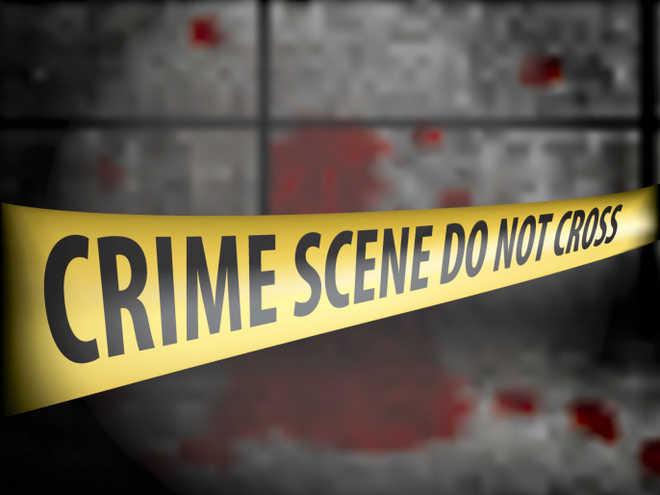 Indian-origin man in US kills daughter, mother-in-law; commits suicide