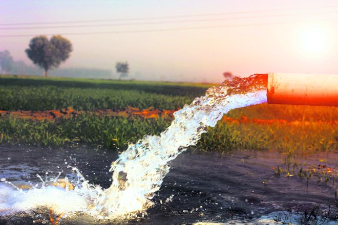Maharashtra: 66 water sources in Palghar sealed due to contamination