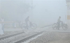 Cold wave conditions persist in Punjab, Haryana