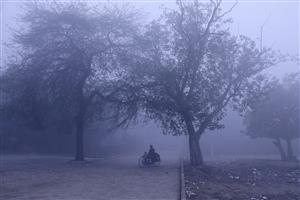 'Very dense' fog lowers visibility to zero meters in Delhi, traffic movement hit