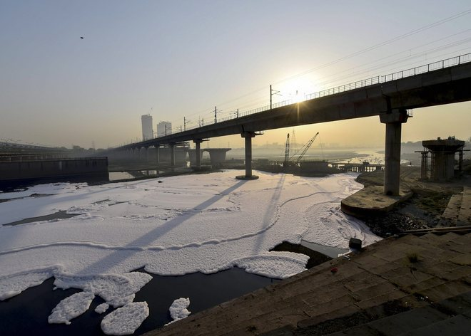 Tell Haryana to stop polluting Yamuna: Jal Board to Centre