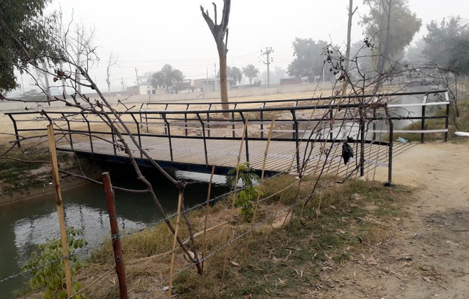 Illegal bridges erected over water channel in Bathinda