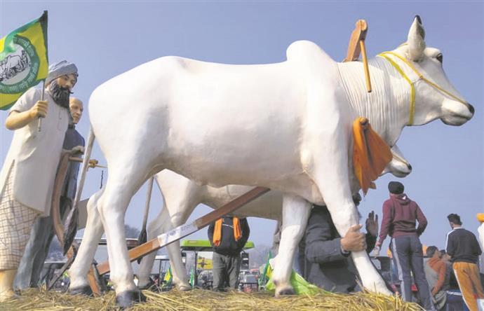 Moga artists' farm tableau in spotlight