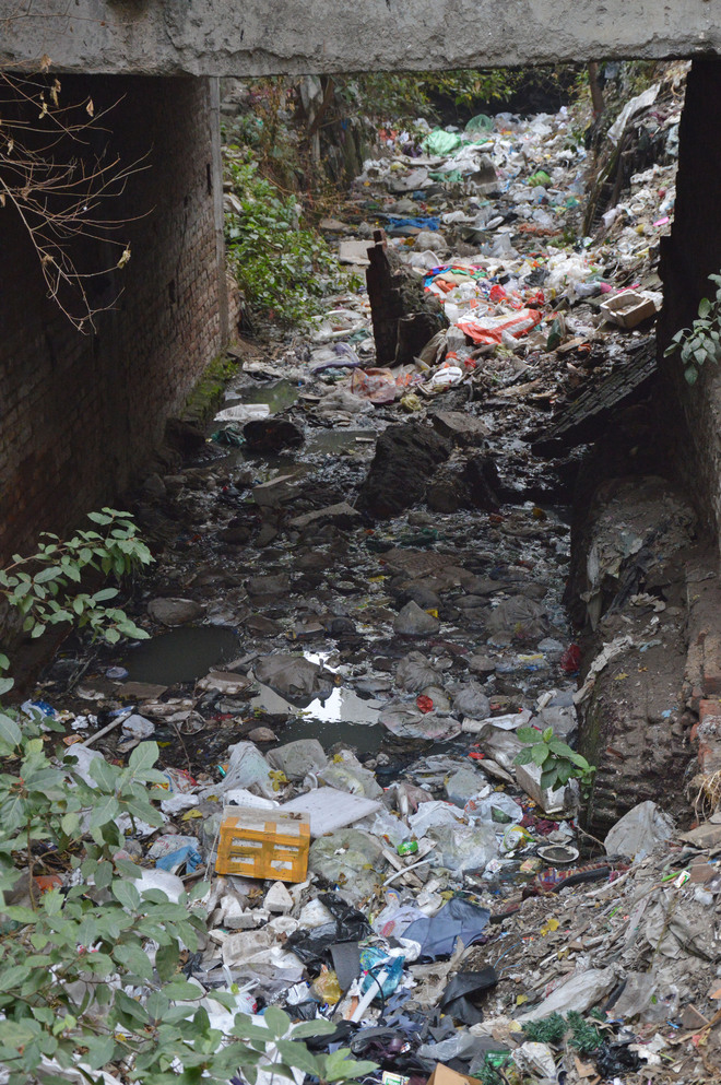 Old drain flooded with garbage cries for care