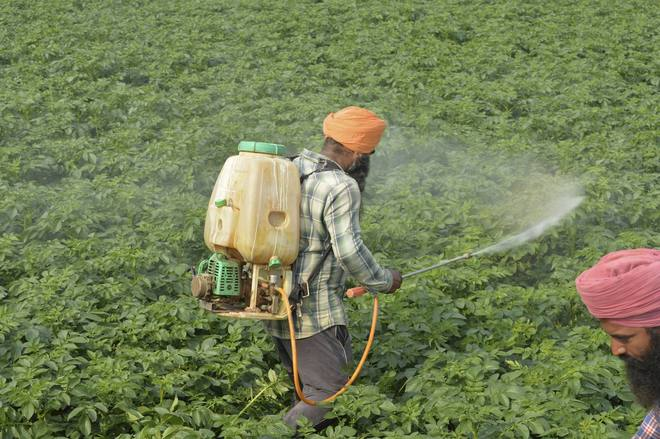 Refer pesticide Bill to select House panel: Manufacturers to govt