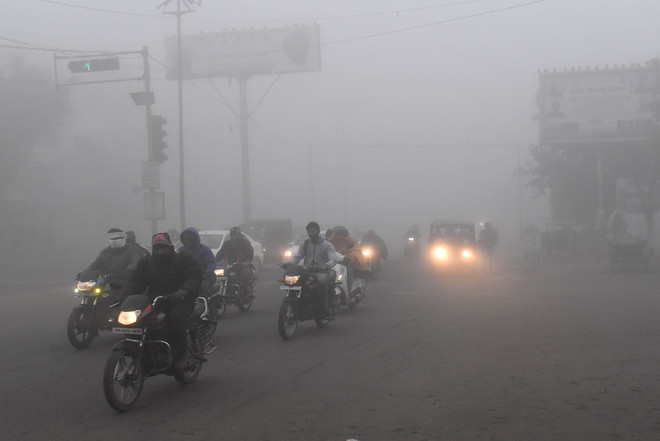 Dense fog envelops Bathinda
