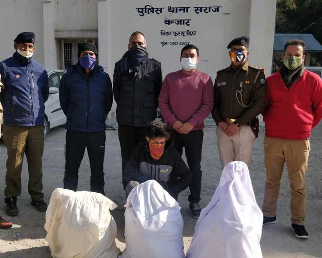 Over 400 kg drugs seized from Kullu